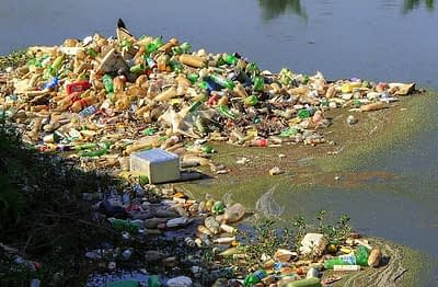 Dechets de bouteilles en plastique